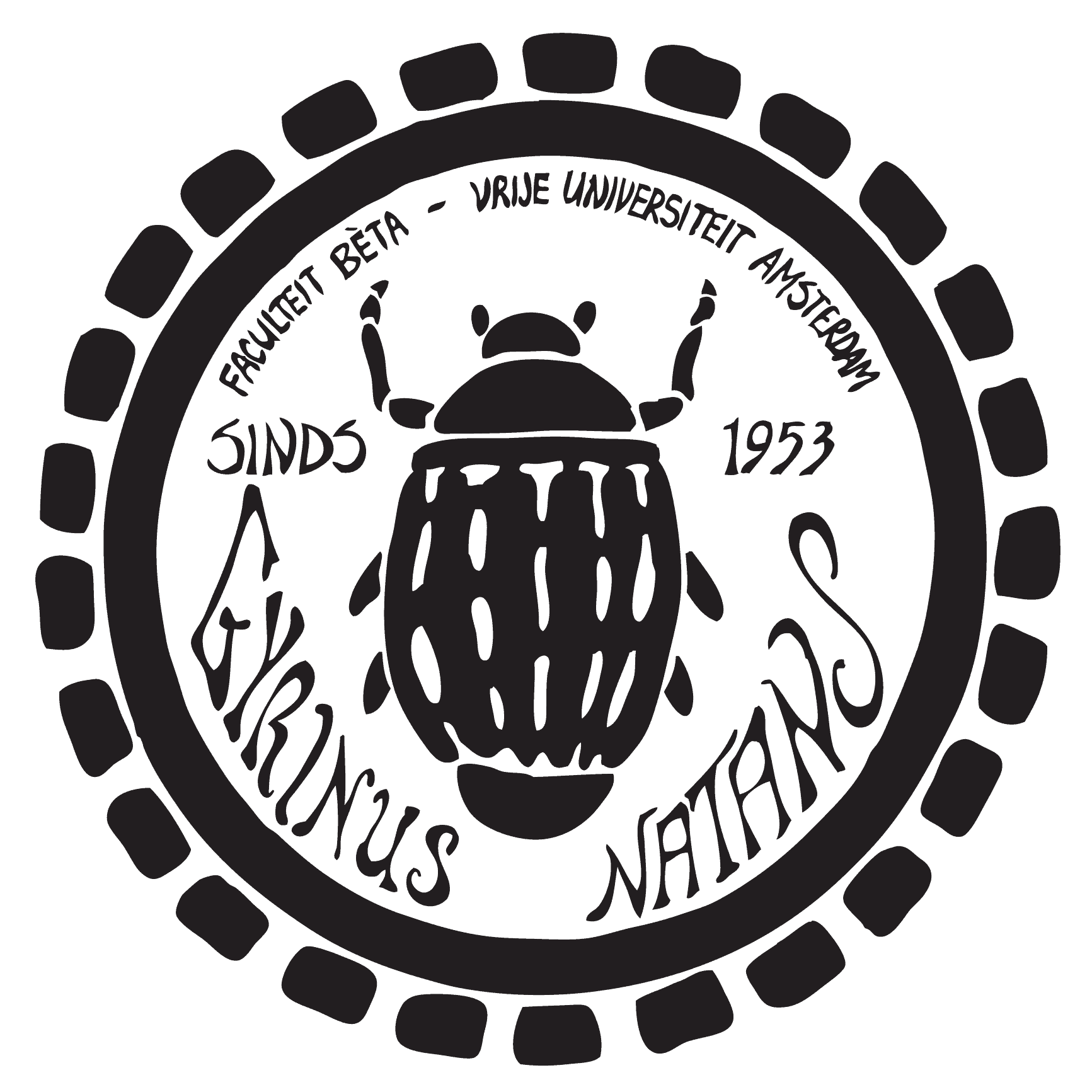 Gyrinus natans